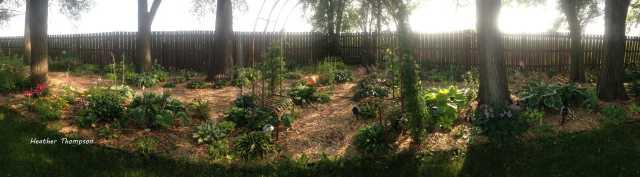 pan gardens 4