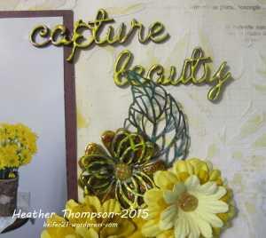 capture beauty close up 2